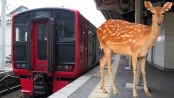 일본 열차 '개 짖는 소리' 스피커 부착한 이유
