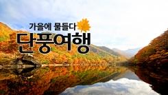 가을에 물들다'단풍여행'