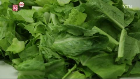 대장균 샐러드 먹지 마세요…대장균의 주범인 이 채소는 무엇일까요?