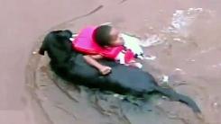 '물은 위험해'…어린애 구하는 119 견공