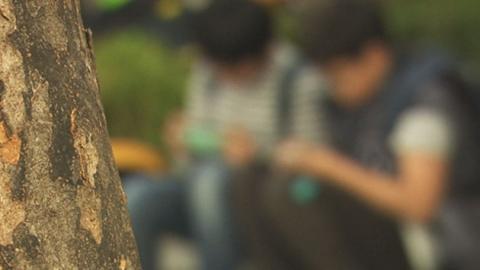 아동음란물 유포 30%가 초등학생