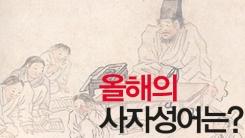 [한컷] 2014 대한민국 '사슴이 말로 둔갑했다?'