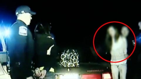 경찰차 훔쳐 탄 소매치기녀 '아찔한 탈주극'