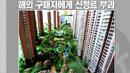 중국인들의 '부동산 싹쓸이'…전 세계가 '몸살'
