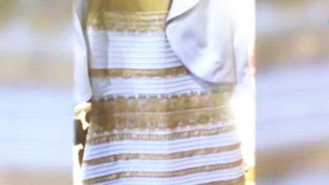 드레스 색깔 논란…흰금·파검으로 양분된 세상