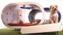 삼성, 3천만 원짜리 '꿈의 개집'으로 유럽 겨냥