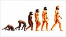 인류 진화의 잃어버린 고리 찾았다