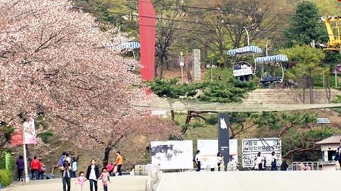 올 들어 가장 따뜻...대공원 봄 나들이 북적