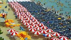 [한컷뉴스] 파라솔 전쟁은 그만! 해운대 해수욕장의 변신