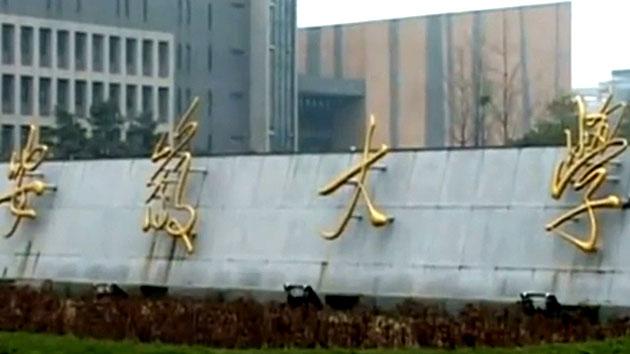 '짝퉁 천국' 중국에는 이것마저 '가짜'다