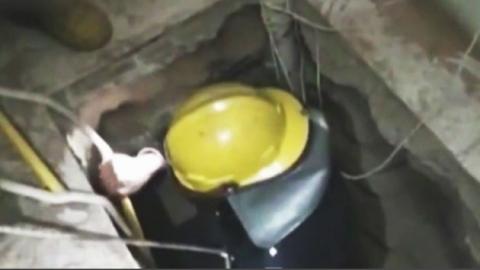 """양고기 식당에 '비밀 땅굴'?…""""유물 훔치려고"""""""