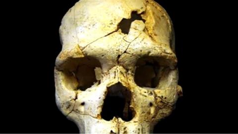 43만 년 전 '인류 첫 살인 희생자' 두개골 발견
