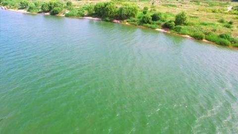 녹조로 뒤덮인 한강…수돗물 안전할까?