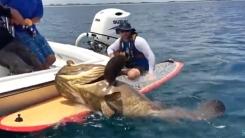 '노인과 바다 실사판' 180kg 괴물 물고기와 사투