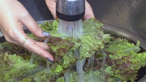 여름철 과일·채소 깨끗이 씻어 드세요!