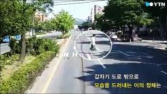 [영상] 너무 쿨한 '무단횡단'에 운전자는 그저 '황당'