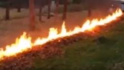낙엽을 한 번에 치우는 '가장 위험한 방법'