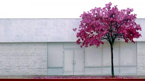 '그림보다 그림 같은' 셔터로 그린 도시 풍경화