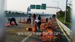 [영상] 마늘로 점령당한 도로..시민들 힘합쳐 '나르고, 옮기고'