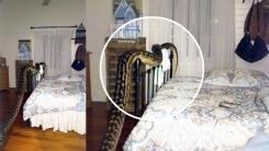 잠자던 여성을 한밤중에 깨운 '4.8m 비단뱀'의 위엄