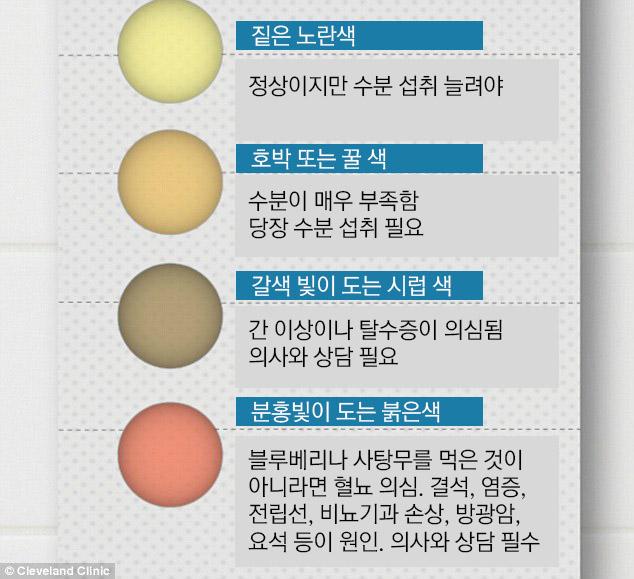 11가지 소변 색으로 알아보는 당신의 건강 상태