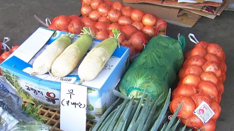 추석 앞두고 채소·과일값 폭등…폭염 여파