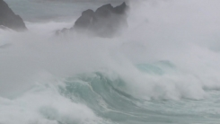 태풍 라이언록 日 접근 '초긴장'...순간최대풍속 초속 50m