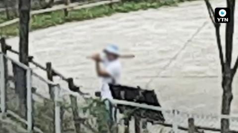 [블박TV] '자고 있던 사자'에 돌팔매질 한 관람객