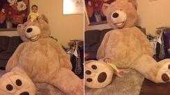 인터넷 스타 등극한 '곰인형에 파묻힌 아기'