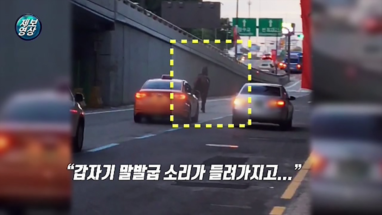 """[영상] 반포대로 위 달리는 말…""""너 어디서 왔니?"""""""