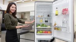 LG, 1~2인 가구 맞춤형 유럽 스타일 냉장고 출시