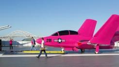 참전 전투기가 핑크색으로 변신한 이유