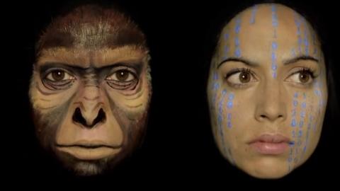 [영상] 얼굴 위에서 펼쳐지는 '인류의 진화'