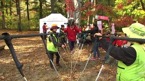 건강한 자연에서 배운다…숲 교육의 효과