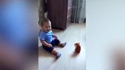 움직이는 햄스터 장난감에 놀란 아이의 귀여운 반응