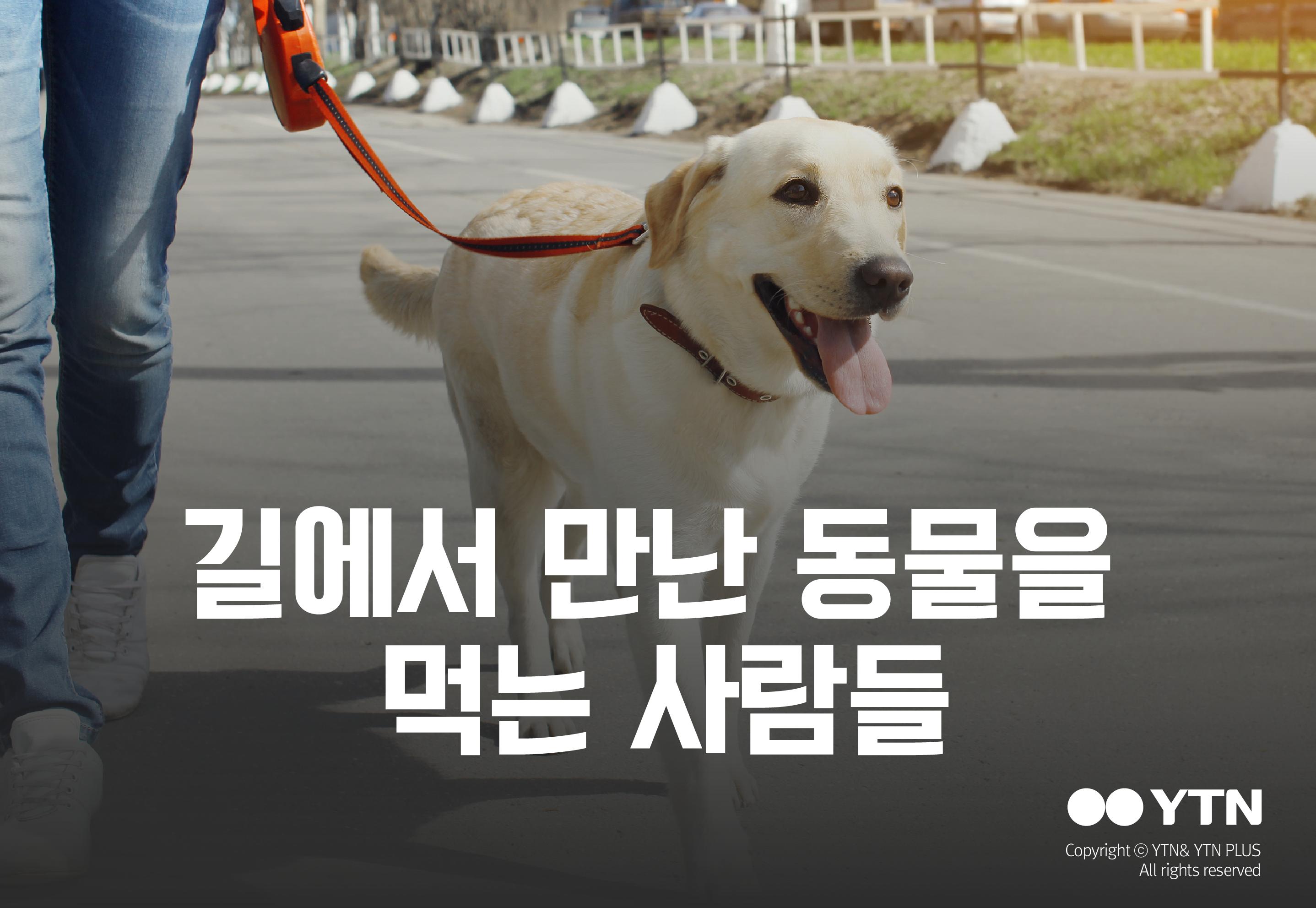 [한컷뉴스] 길에서 만난 동물을 잡아먹는 사람들