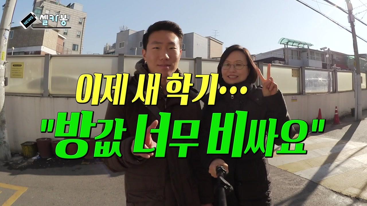 """[셀카봉뉴스] 이제 새 학기...""""방값 너무 비싸요"""""""