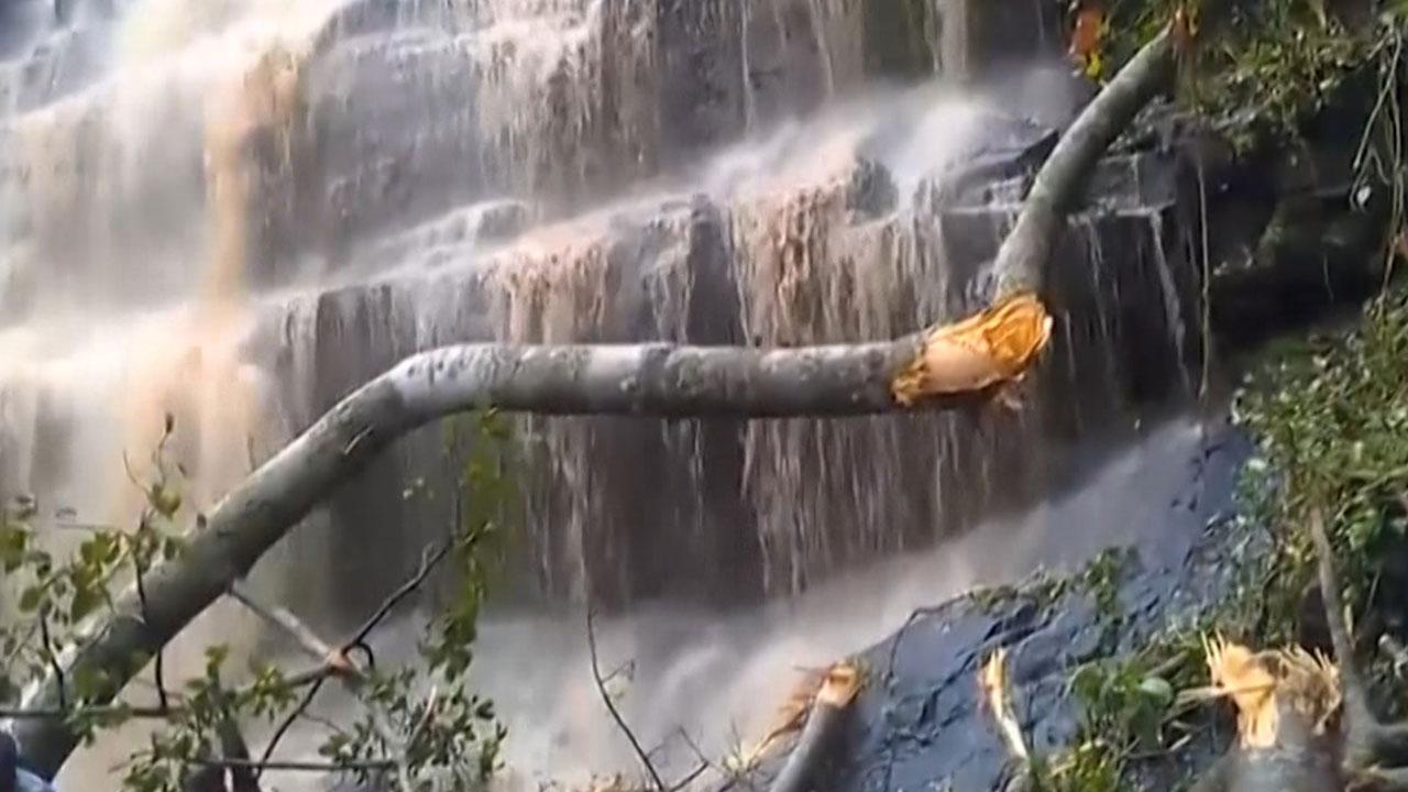 가나, 폭풍에 나무 쓰러져 학생 20명 숨져