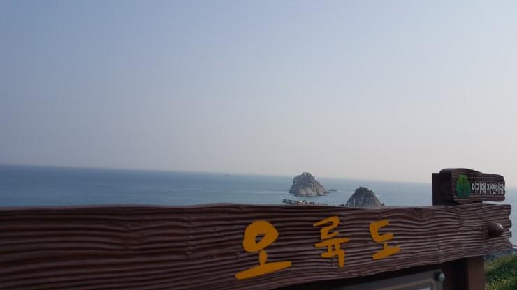 [포토에세이-부산] 우리 대한민국