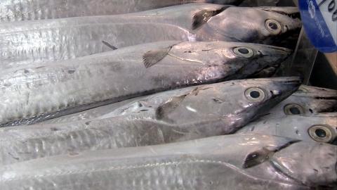 수입 먹거리 가격 '들썩'…갈치 19% 상승