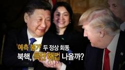'세기의 회담' 트럼프-시진핑 첫 만남