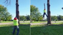 [영상] '아찔한 순간'...나무 베던 남성의 수난