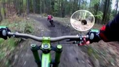 [영상] '깜짝이야'...산악자전거 뒤쫓는 야생곰