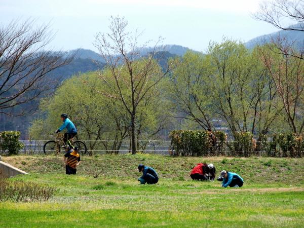 [포토에세이-남양주 물의 정원] 새봄은 온통 봄나물이다