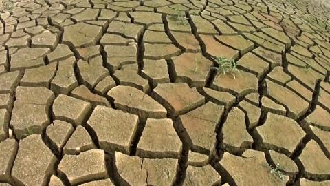 """""""올해도 극심한 가뭄, 4대강 보 개방 어떤 영향있을까?"""""""