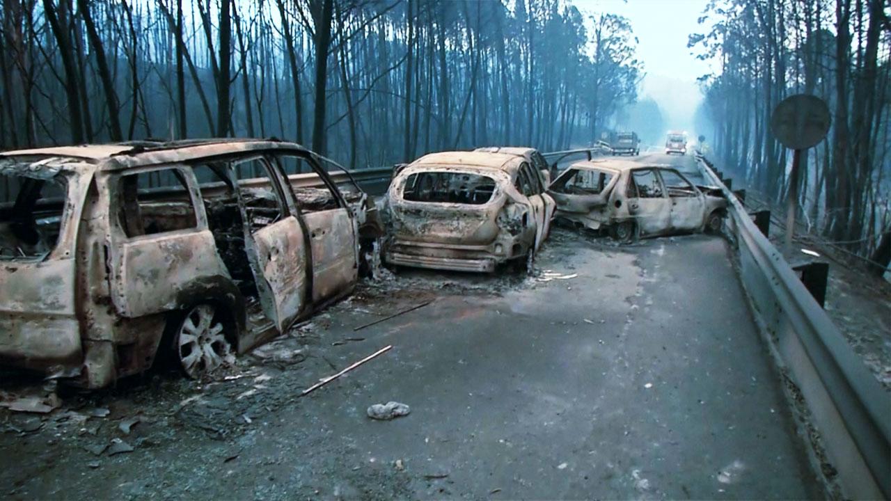 포르투갈 대형 산불...60여 명 사망