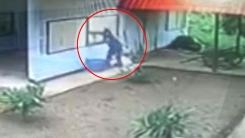 CCTV에 포착된 세상에서 가장 멍청한 도둑