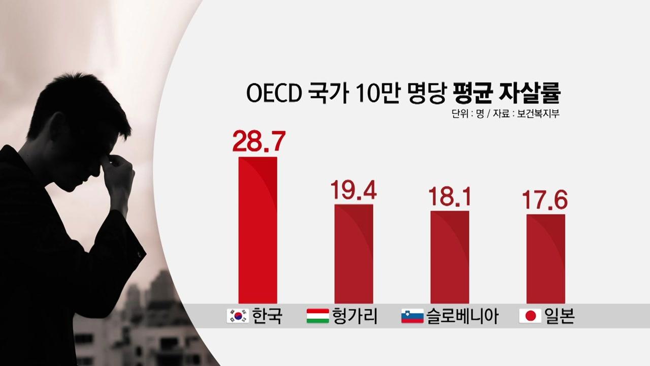 12년째 OECD 자살률 1위...하루 44명꼴