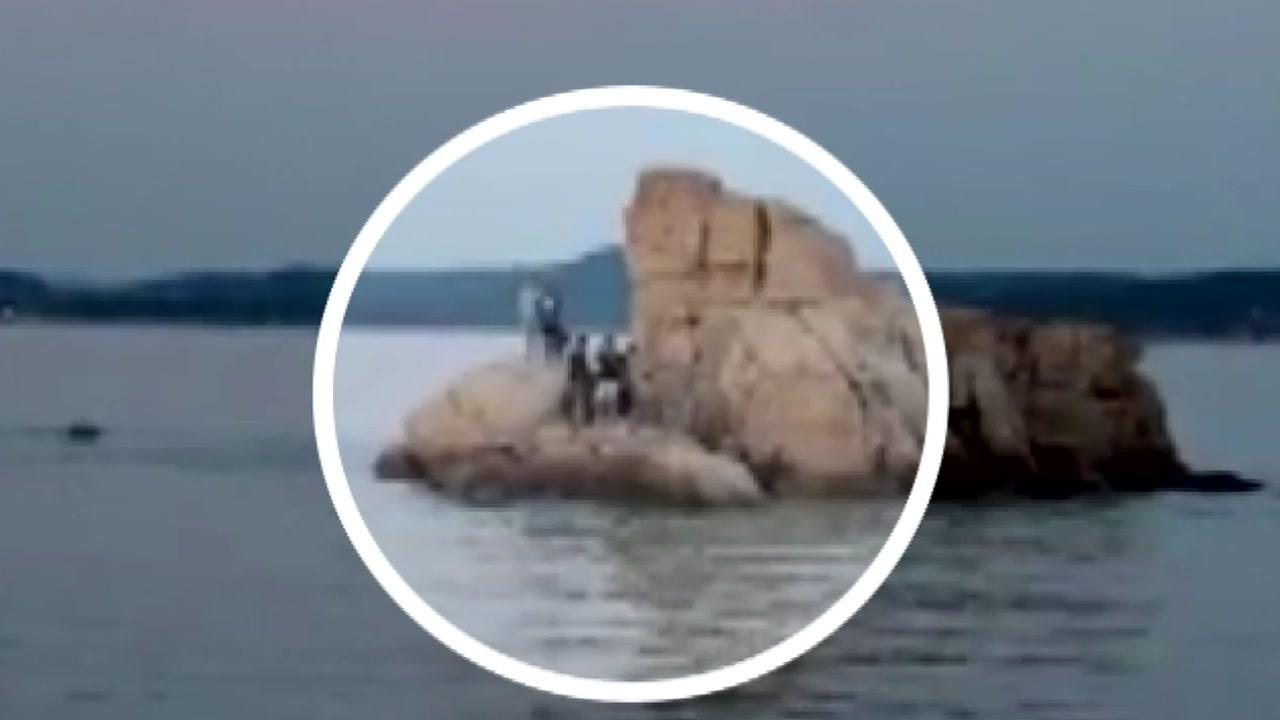 밀물 차는 것도 모르고 바위에서 낚시하던 6명 구조