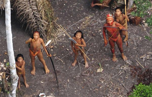 브라질 원시 부족 살해한 불법 채금꾼 논란